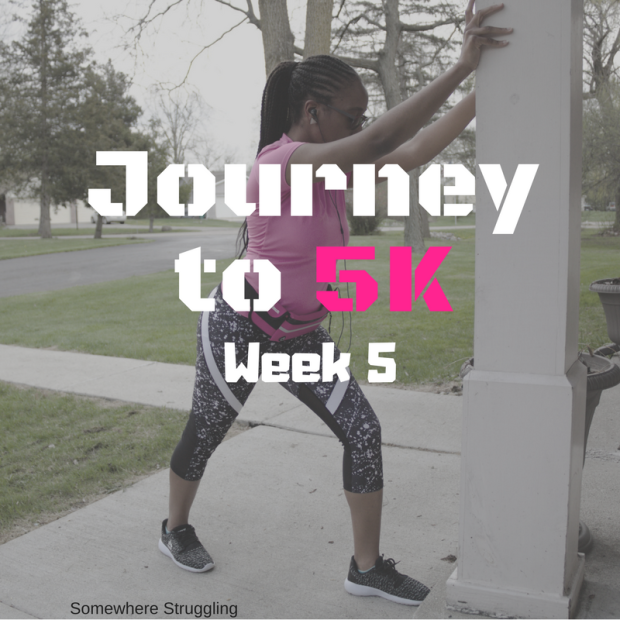 Journey to 5K (2)