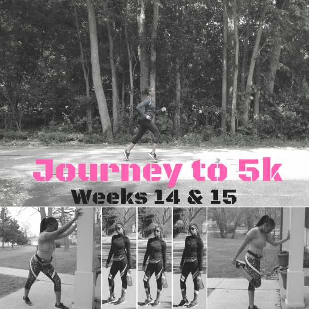 Journey to 5k (1)