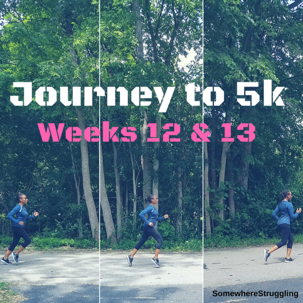 Journey to 5k (5)